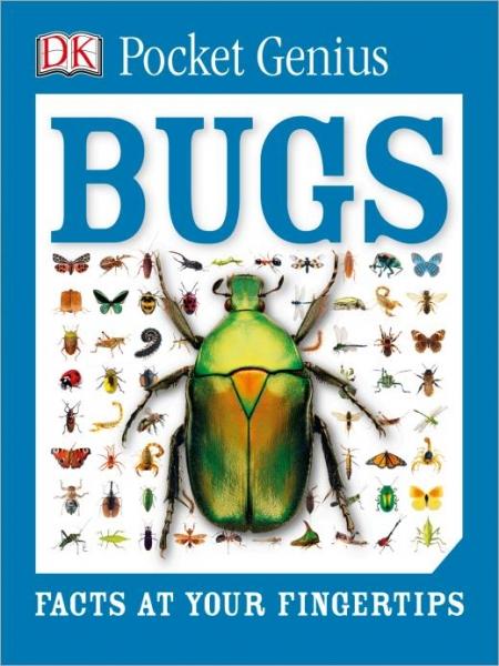 DK Pocket Genius Bugs-Dorling Kindersley
