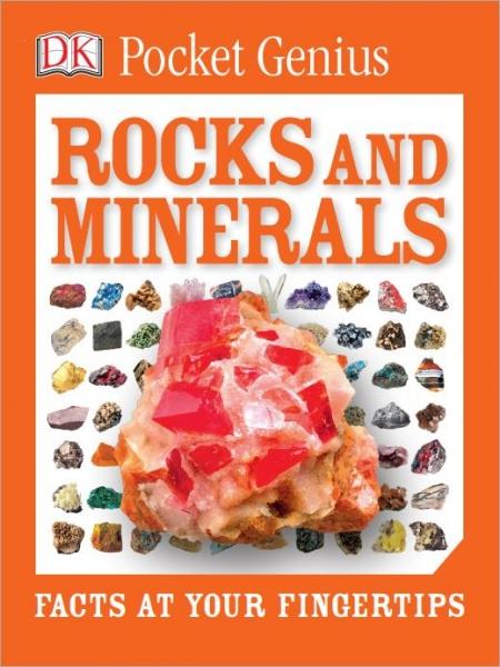 DK Pocket Genius Rocks and Minerals -Dorling Kindersley