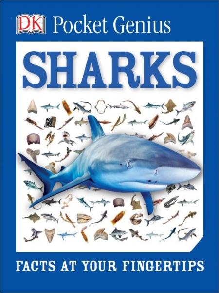 DK Pocket Genius Sharks-Dorling Kindersley