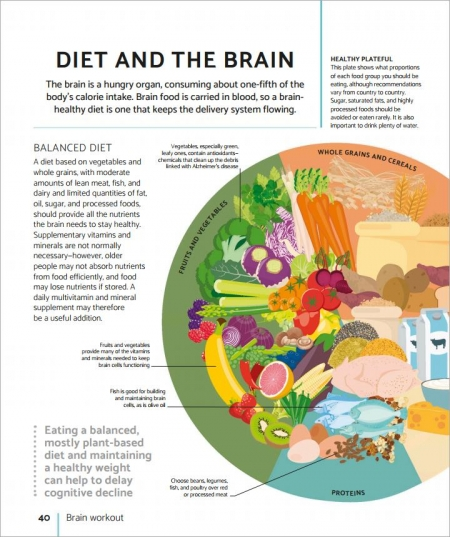 DK2021 the brain fitness book shows you how best to achieve it in youth